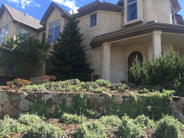Highlands Ranch home close up view